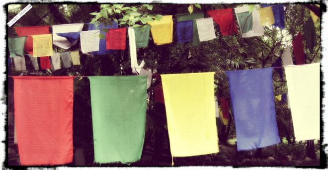 The Tibetan flags