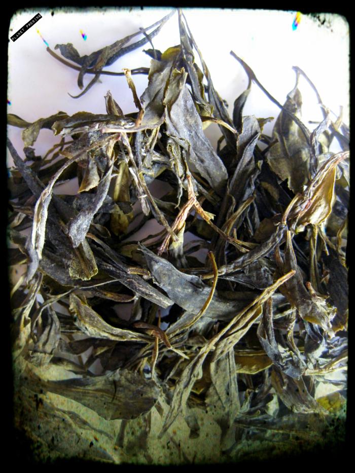 Monkey-king tea