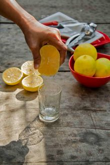 Iranian Sweet Lemon
